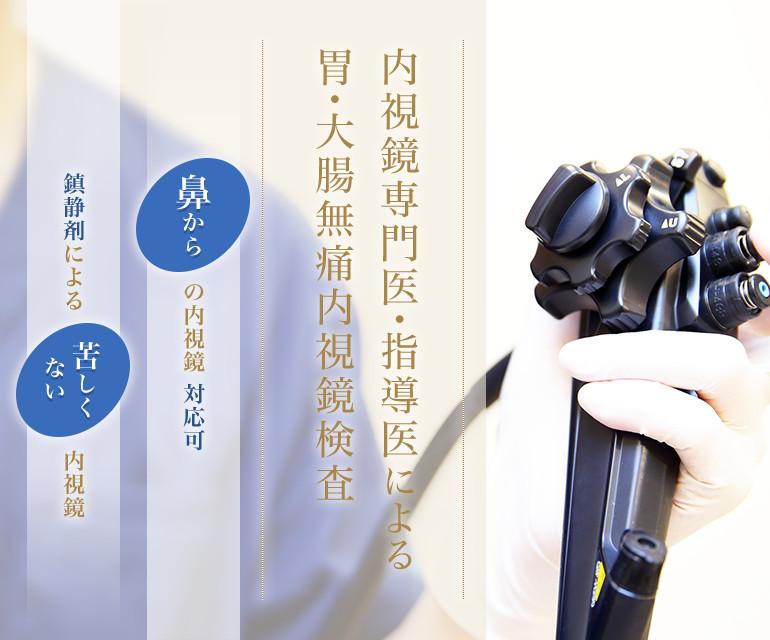 内視鏡専門医による胃・大腸無痛内視鏡検査 鼻からの内視鏡対応可 鎮静剤による苦しくない内視鏡